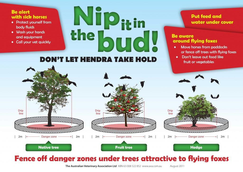 Nip-it-in-the-bud-diagram