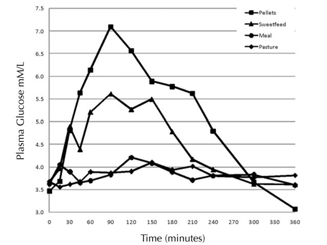 Circulating glucose levels in grazing horses.